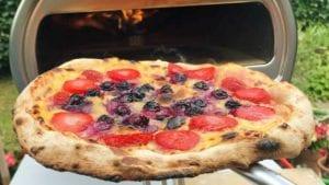 meilleur four a pizza gaz charbon bois électrique pas Cher comparatif guide d'achat avis