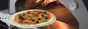 quel four pizza choisir